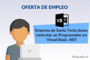 Oferta de empleo: Programador en Visual Basic .NET
