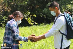 Proyecto para la conservación del Río Tamulasco