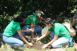 Cerramos el mes del Medio Ambiente reforestando en ctón Las Minas