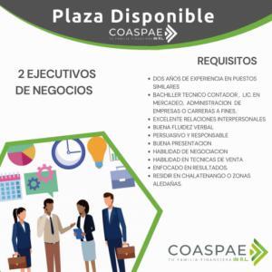 Entrevistas de trabajo para Ejecutivo de Negocios COASPAE de R.L.