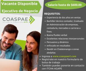 Oferta de Empleo para Ejecutivo de Negocios en COASPAE de R.L.